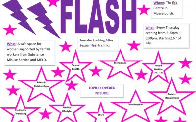 Introducing Flash